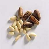 Pine nuts, shelled and unshelled