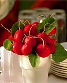 Radishes in ceramic beaker (as table decoration)