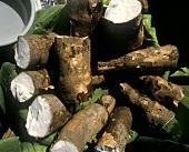 Cassavewurzeln (bzw.Maniok)