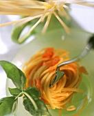Linguine al pomodoro (Nudeln mit Tomatensauce, Italien)