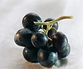 A Small Bunch of Purple Grapes