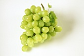 A green grape