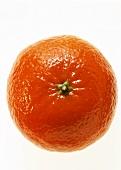 A mandarin orange (satsuma)
