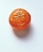 Eine Mandarine