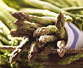 Green asparagus with green and purple tips