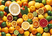 Lots of citrus fruits (covering the surface)