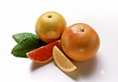 Yellow grapefruit & segment; red grapefruit & segment