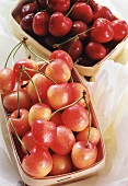 Red cherries and a white cherries in punnets