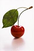 Eine rote Kirsche mit Blatt