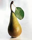 Eine Birne mit Stiel und Blatt