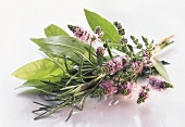 Herb posy (with mint flowers, rosemary, bay)