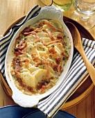 Celery gratin in gratin dish
