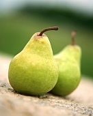 Two pears on stone background (outdoors)