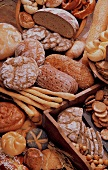 Many Assorted Breads