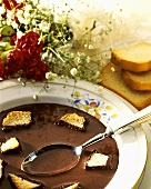 Chocolate soup with pieces of zwieback (rusk)
