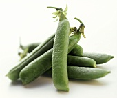 Several Fresh Sugar Snap Pea Pods