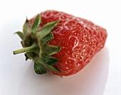 Eine Erdbeere mit Stiel