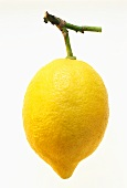 A whole lemon with stalk