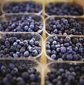 Fresh Blueberries in Plastic Containers