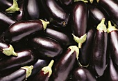 Lots of aubergines (filling the picture)