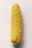 A corncob, husk removed