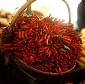 Basket of fresh chili peppers at the market