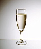 A glass of champagne on sheet of glass