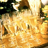 Many Flutes of Champagne
