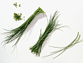 Chives straw, bunch of chives and snipped chives