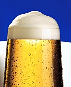 Head of foam on a glass of beer