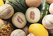 Various melons, halved Galia melon on top