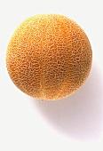A Round Cantaloupe Melon