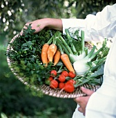 A Person Holding a Basket of Fresh Vegetables