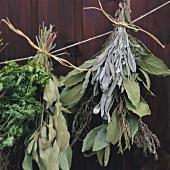 Zwei Bund getrocknete Kräuter hängen nebeneinander an Schnur