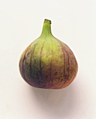 A fresh fig on white background