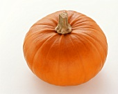 Giant orange pumpkin on white background