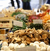 Mushrooms and vegetables at a market