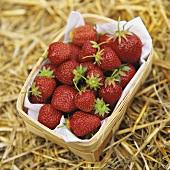 Strawberries in punnet on straw