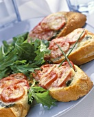 Toasted baguette slices with tomatoes & cheese  on plate