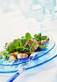 Corn salad with watercress, avocado and shrimps