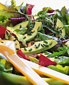 Gardener's salad with avocado