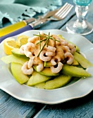 Avocado salad with honeydew melon and shrimps