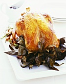 Roast turkey on bay leaves and carrots