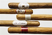 Five different cigars