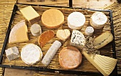 Various raw milk cheeses from Normandy on rush mat