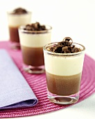 Mousse au Chocolat with Grated Chocolate
