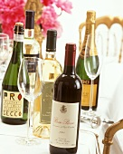Various wines and Prosecci for a summer party