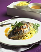 Loup de Mer (sea perch) on herb couscous