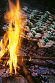 Frog's leg with herbs on grill rack over fire