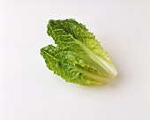 Two romaine lettuce leaves